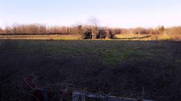 Terreno Agricolo 11000 mq.