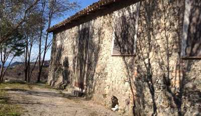 Proprietà Rustica Località Macchia