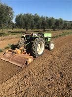 Terreno agricolo irrigabile di m/2 8000 circa