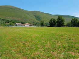 Terreno Agricolo Giano Vetusto (CE) 4500 mq