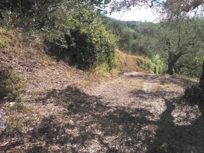 Terreno agricolo a Spaccalacanna